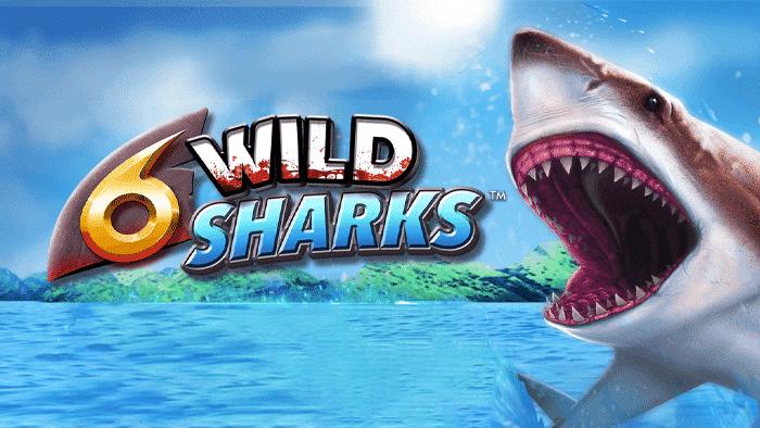 6 Wild Sharks slot casino review
